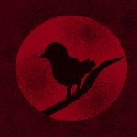 Nightingale1's Avatar