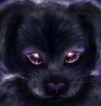 ShadowWolf333's Avatar